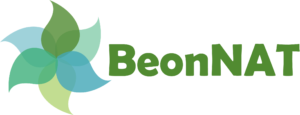 BeonNAT logo